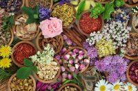 Fabrication de produits de beauté 100% naturel